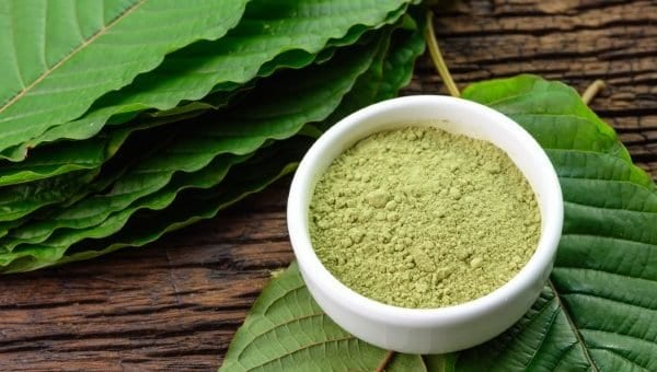 New Kid on the Block: Vietnam Kratom